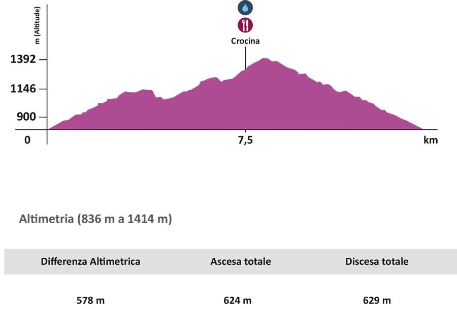 altimetria_trail_13_km